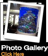 NOVA Aquarium Photos